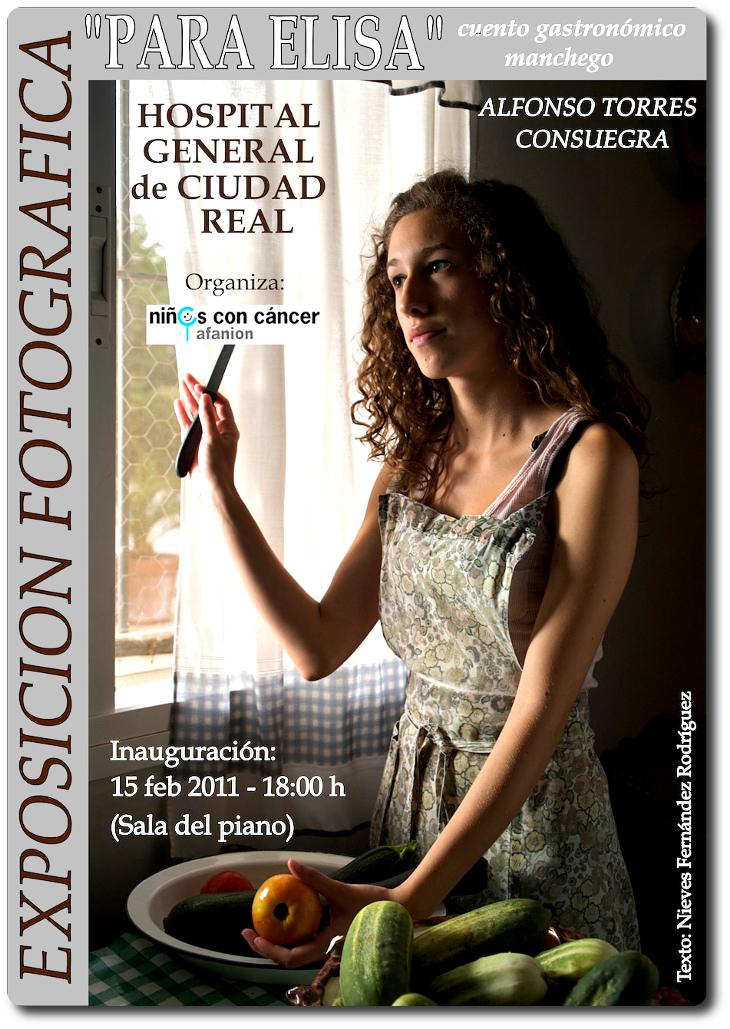 Cartel de la Exposición 'Para Elisa'. Alfonso Torres. Hospital General de Ciudad Real.